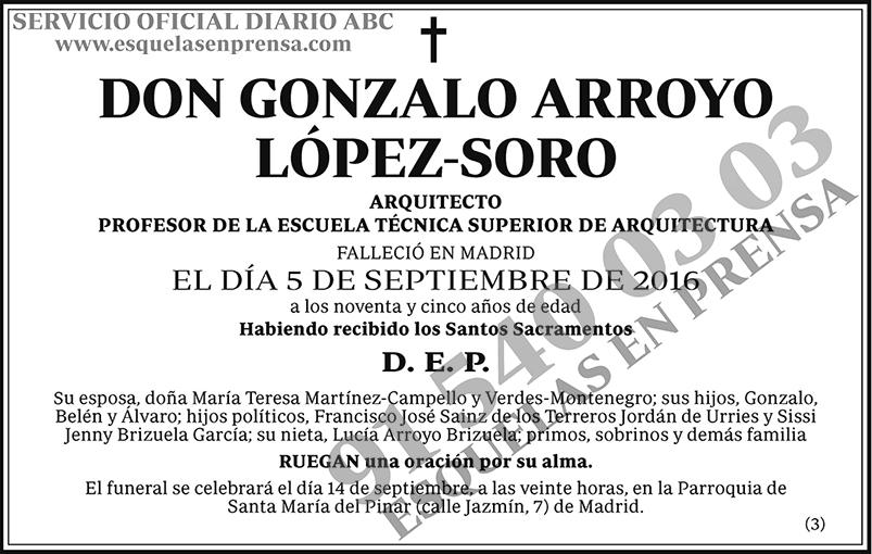 Gonzalo Arroyo López-Soro